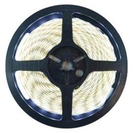 LED strip helder wit | Budget | IP22 | 4000K