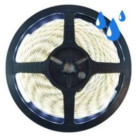 LEDstrip helder wit | Premium | IP65 | 4000K