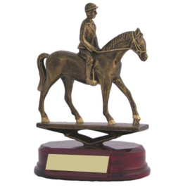 Paarden 8