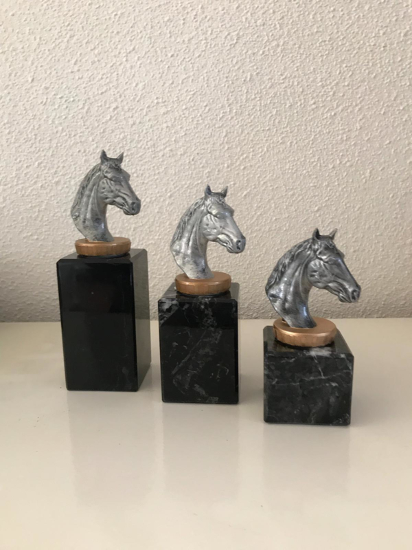 Paarden 4