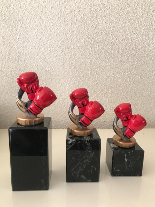 Vechtsporten 9