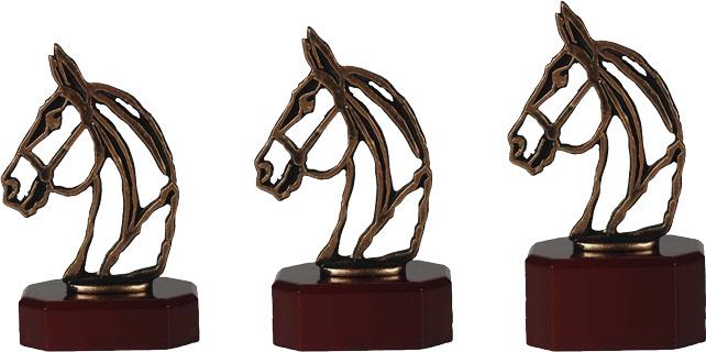 Paarden 9