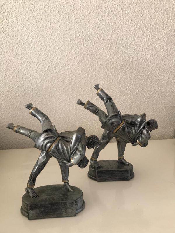 Vechtsporten 10