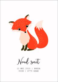 Geboorte poster vosje