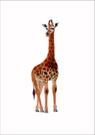 Dieren poster giraffe