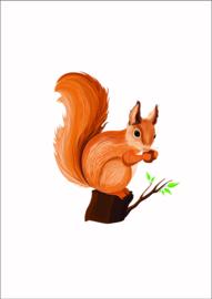 Dieren poster eekhoorn