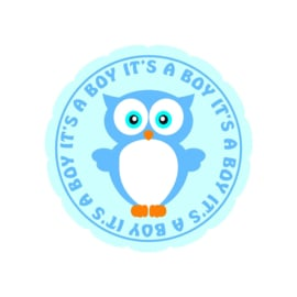 It's a boy sticker 1
