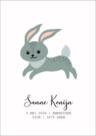 Geboorte poster konijntje