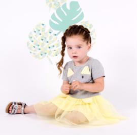Grijs poezen jurkje met licht geel  met tule.