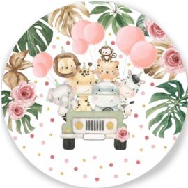 Wandbord Safari verjaardag roze