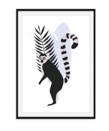 Jungle poster - Ringstaartmaki