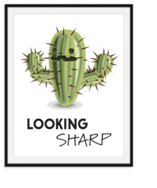 Looking sharp - cactus poster