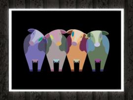 Kleurrijke koeien poster