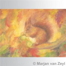Marjan van Zeyl Eekhoorn 425