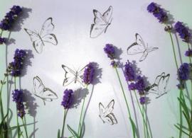 Vlinders 036