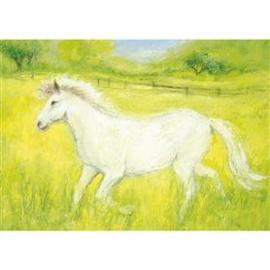 Marjan van Zeyl Witte paardje 320
