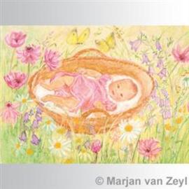 Marjan van Zeyl Baby in mandje 452