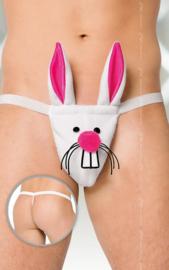 Softline Collection - Grappig konijnen string voor heren