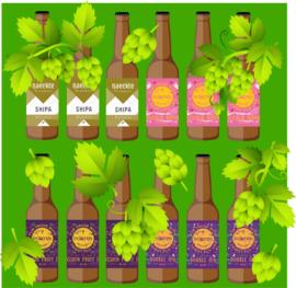 IPA-box (12 flessen)
