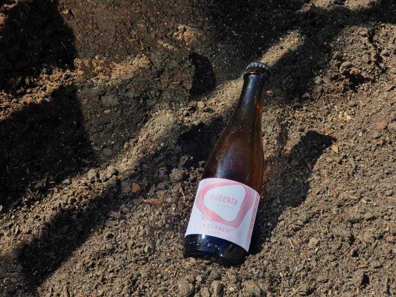 Naeckt in het Wild   Polaris Grisette 3,3% (37,5 cl. fles)