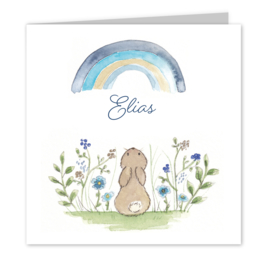 Geboortekaart jongen   Rainbow Bunny