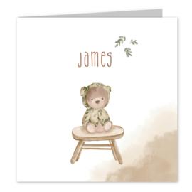 Geboortekaart | Bear