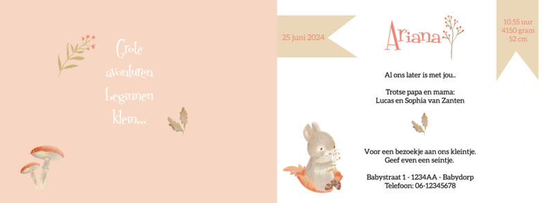 Geboortekaart meisje | Leaf Bunny