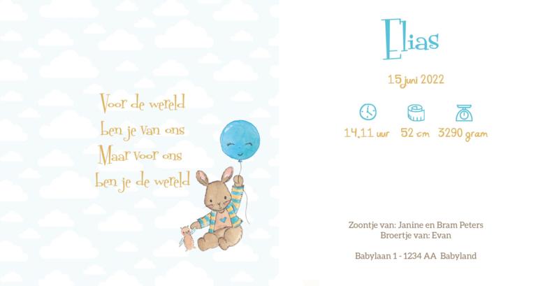 Geboortekaart jongen| Fly Bunny