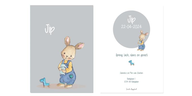 Geboortekaart jongen | Bunny