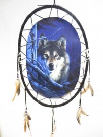 ovaal schuilende wolf