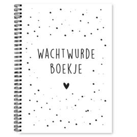 Fries wachtwoordenboekje