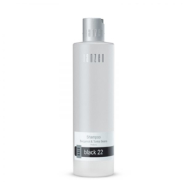 Shampoo Black 22