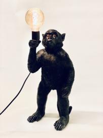 Monkey light L