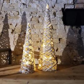 Set van 2 boompjes met licht