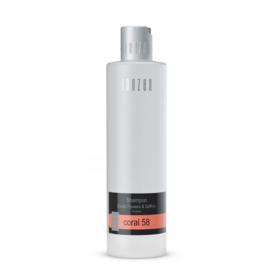 Shampoo Coral 58