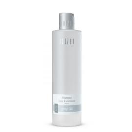 Shampoo Grey 04