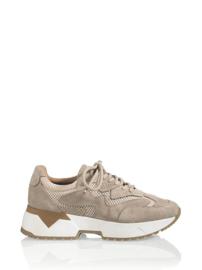 BRISBANE - Sneaker
