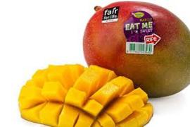 Mango RTE