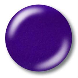 NSI UV Colorgel - Paparazi 9.5g