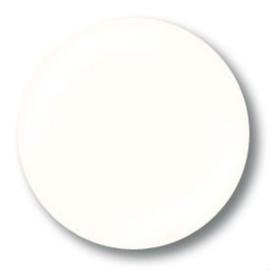 NSI UV Colorgel - Ivory 9.5g