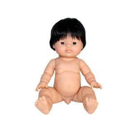 Pop Gordi jongen (Aziatisch met kort haar)