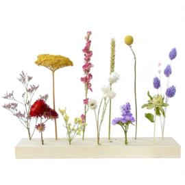 Flower stand: XL