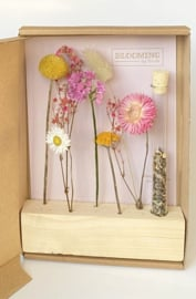 Flower stand: Seeds & Flowers