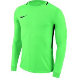 Groen NIKE keepersshirt of compleet tenue