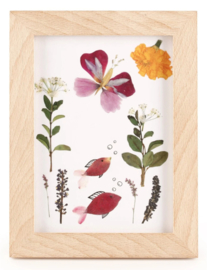 Kikkerland Bloemenpers