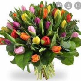 Tulpen liefde