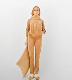 LHK-V/camel