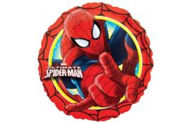 Spiderman 18''