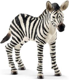 Zebra veulen - Schleich 14811