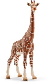 Giraffe vrouwtje - Schleich 14750